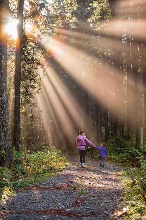 Une femme et un enfant se balandant dans la forêt main dans la main